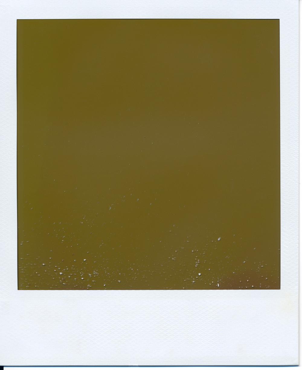 Polaroid (11)final.jpg
