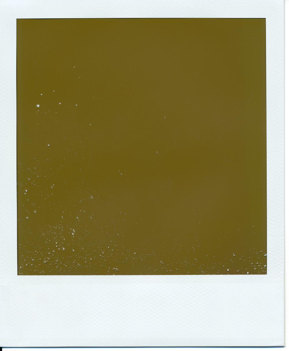 Polaroid (2)final.jpg
