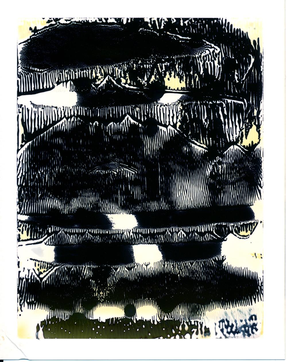 Polaroid210_3KB.jpg