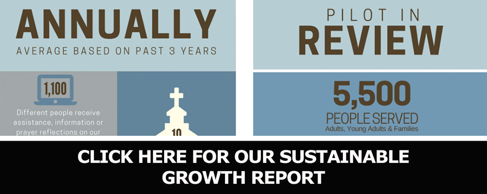 Annual Report Infographic 2016.jpg