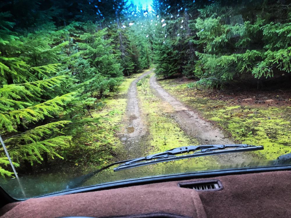 Seattle VW Camper Van Rental | Black Forest Westfalias | Westfalia Rental | Campervan Rental ...