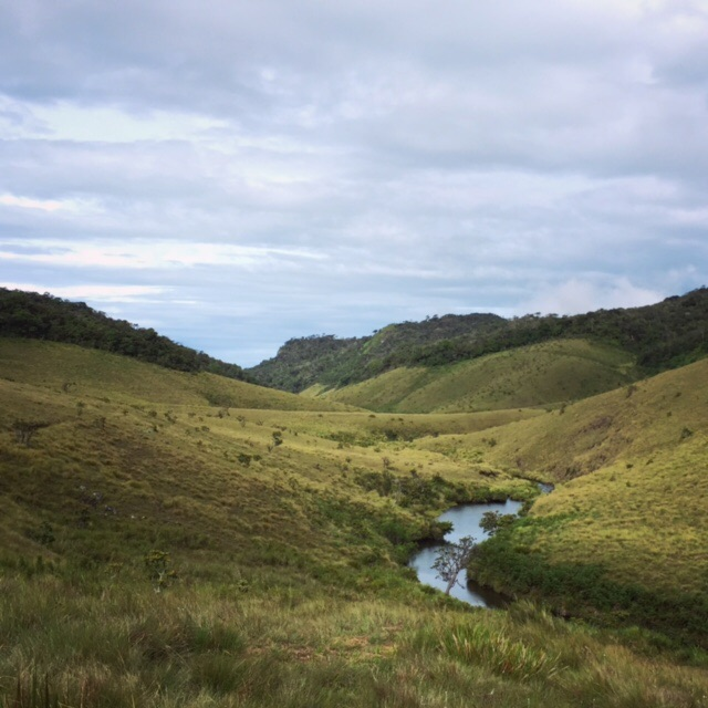 The desolate, windswept beauty of Horton Plains, Sri Lanka
