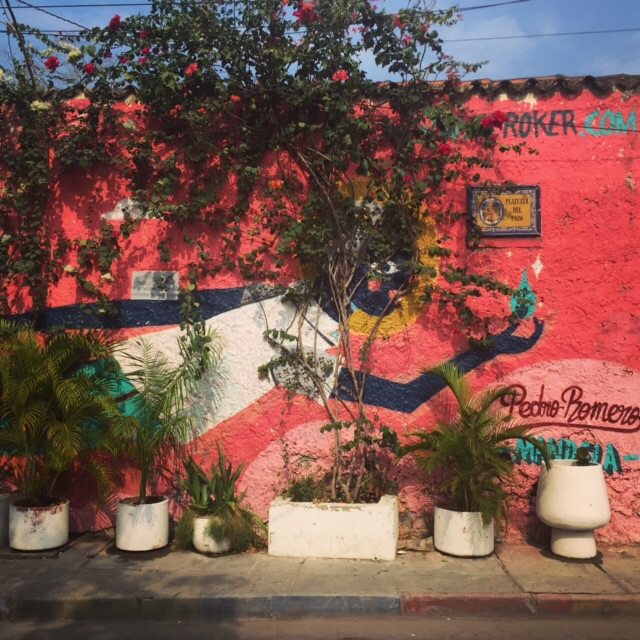 Street art poking out from behind some plants in the Getsamaní area of Cartagena, Colombia