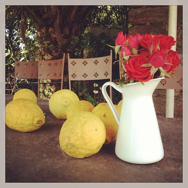 Flowers and lemons on a table at the Casa dos Noche, La Coruña, Spain  @jensetgo