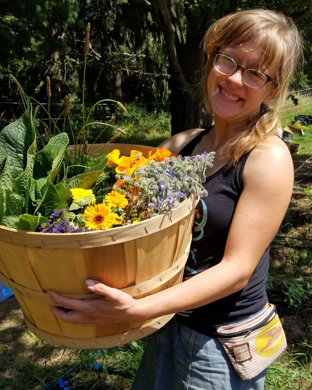 Jenny with a bushel's worth of summer abundance. Clockwise from 9 o'clock: Russian Comfrey, Narrow-leaf Plantain, California Poppy, Borage, Kapoor Tulsi, Calendula, Mountain Mint, and Hyssop.