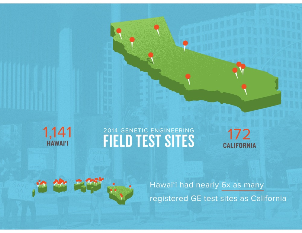 In 2014 alone, Hawaii had over 6 times more GE crop test sites than California.