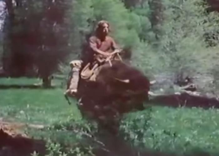 083f16a2 Guy on a Buffalo — EHAP
