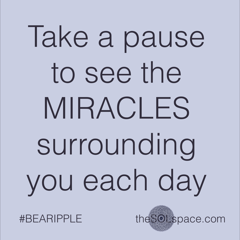 #BeARipple..take a pause and see the miracles surrounding you each day @theSOLspace