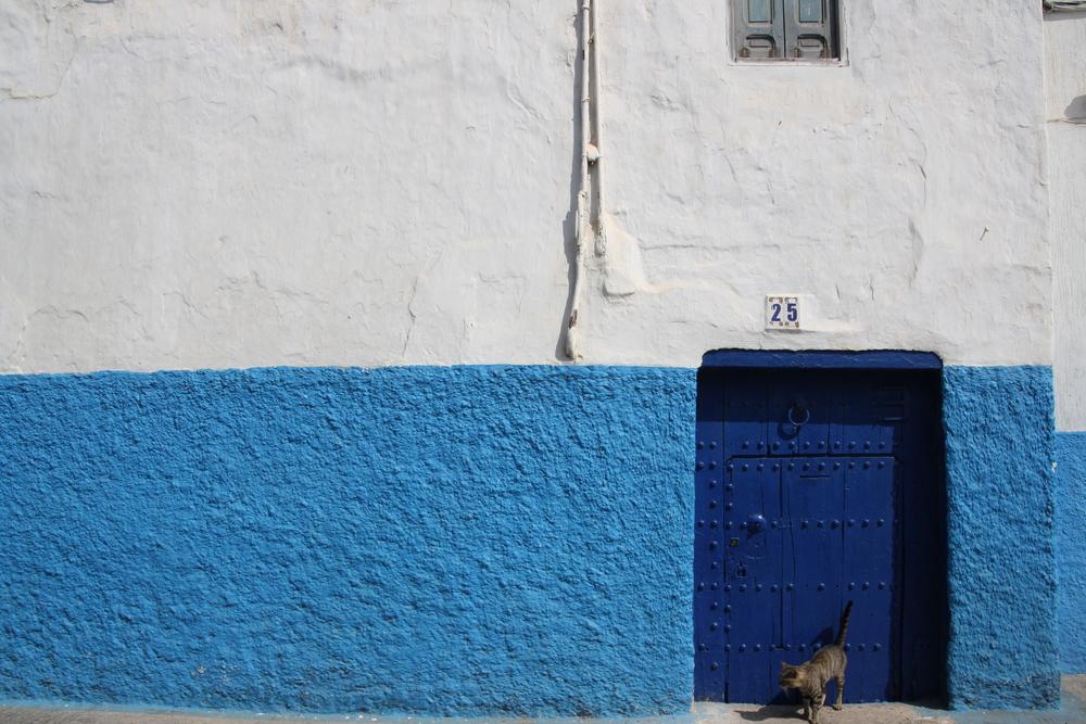 """""""Rabat"""" by Ellen Wiencek"""