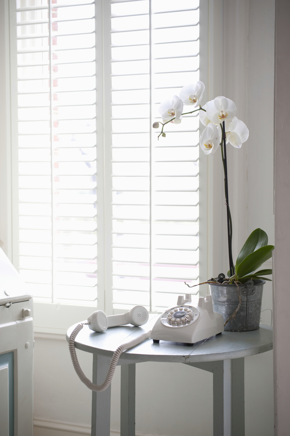 White solid window shutters Dorchester