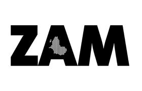11_ZAM_280px.png
