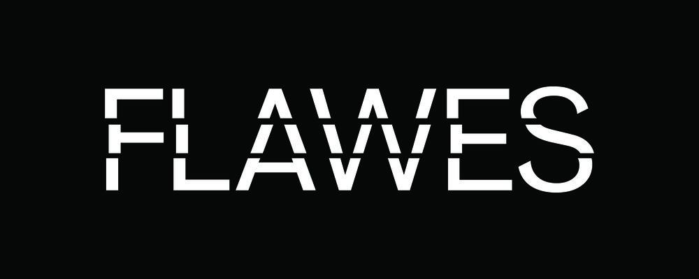 Flawes LOGO TYPE White.jpg