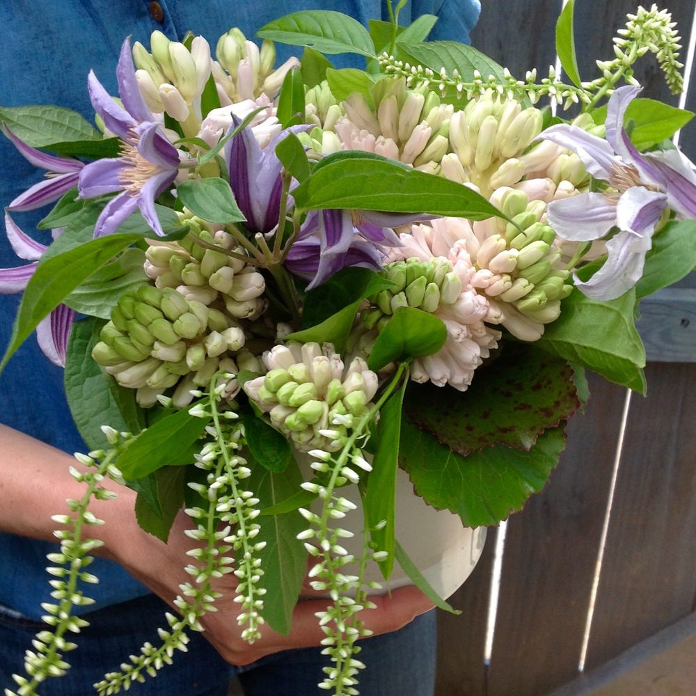 Springy Hyacinth posies starting at $125 (as shown $125)