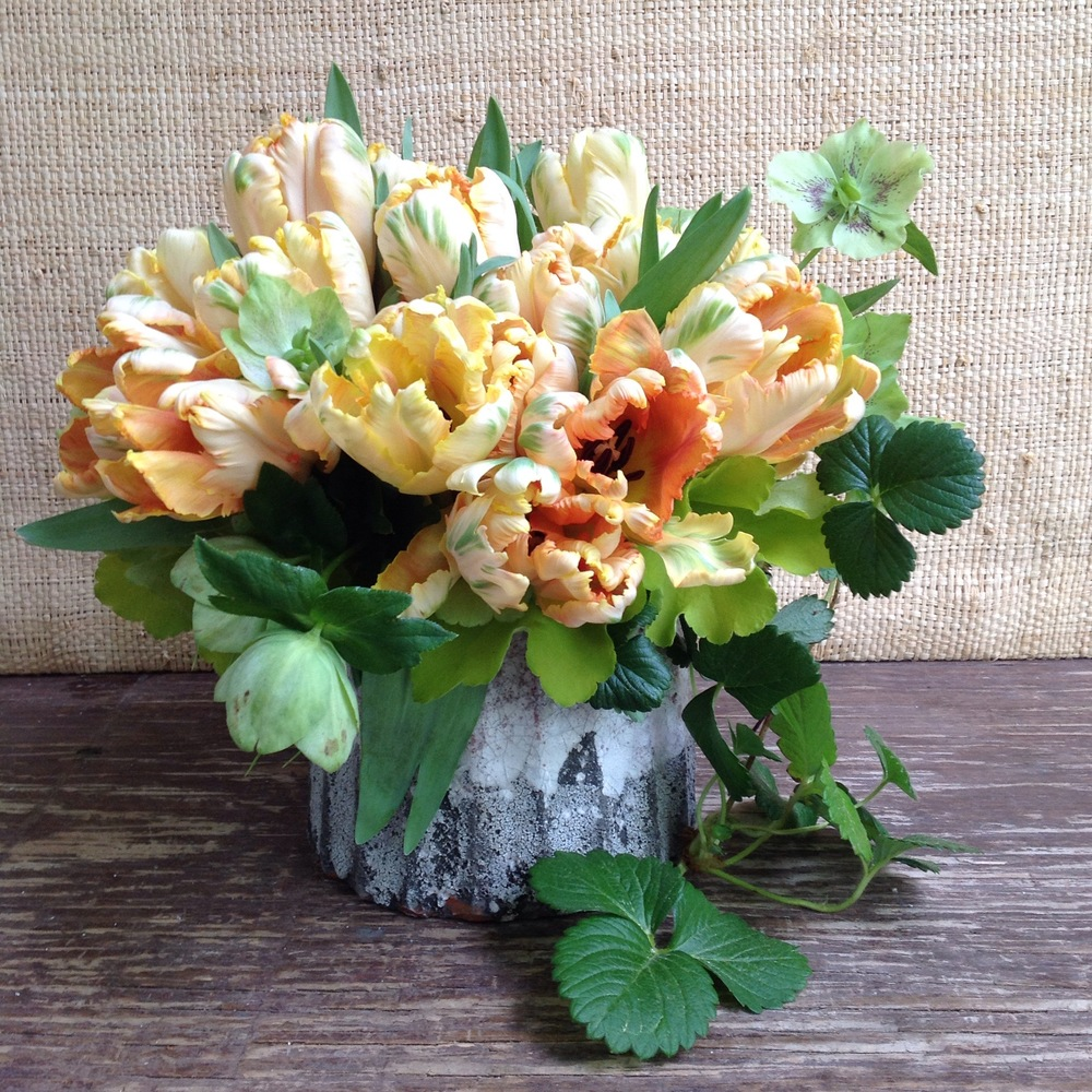 Springy Tulip posies starting at $125 (as shown $150)