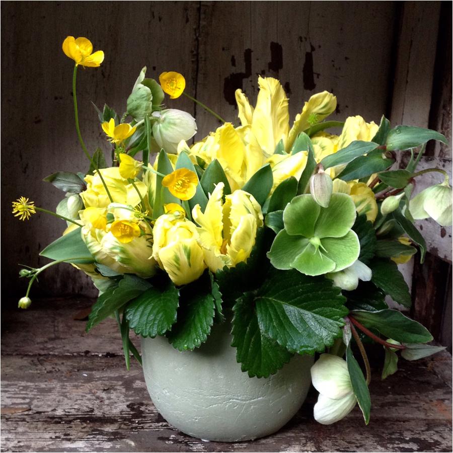 yellowtulips.jpg
