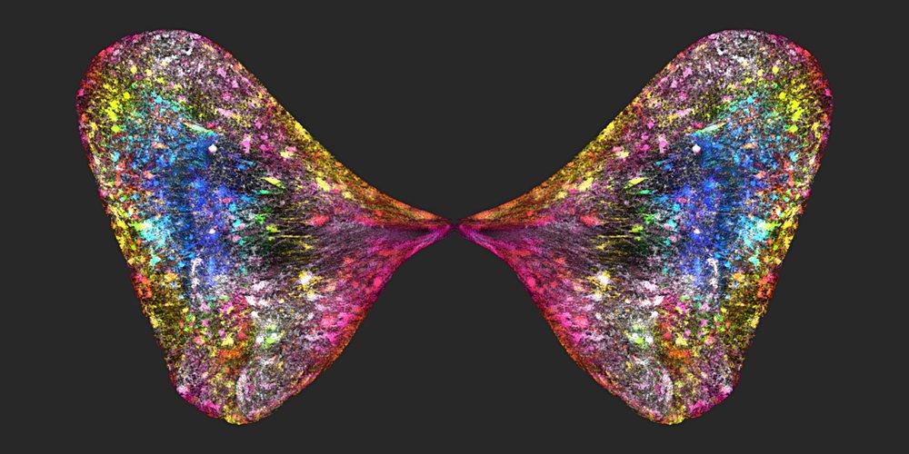 DNA Butterfly_jpg.jpg