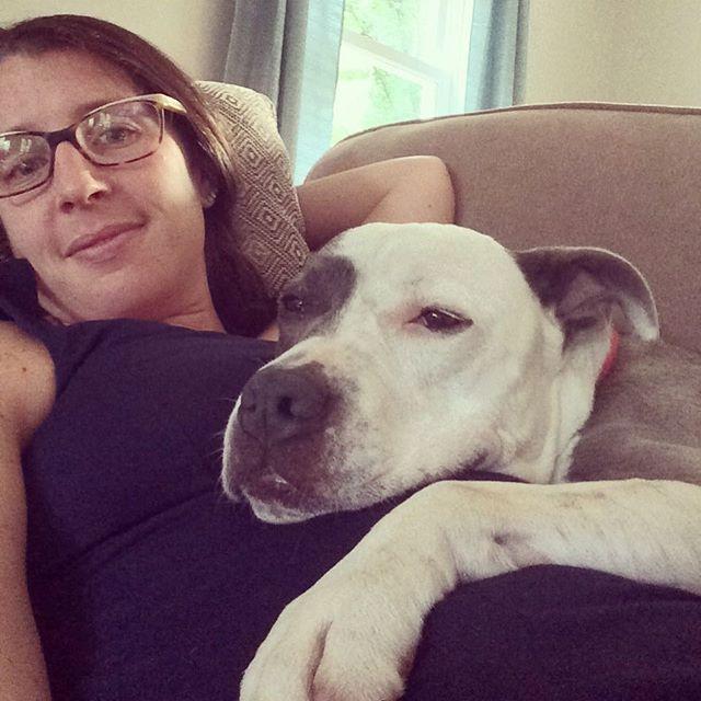 My favorite place to relax 😏❤️🐶 #pitbull #instapit #dontbullymybreed #Sly #bigweirdo #cuddlebug