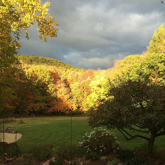 Never a bad view #Princeton #fall #newengland #pinehill #home