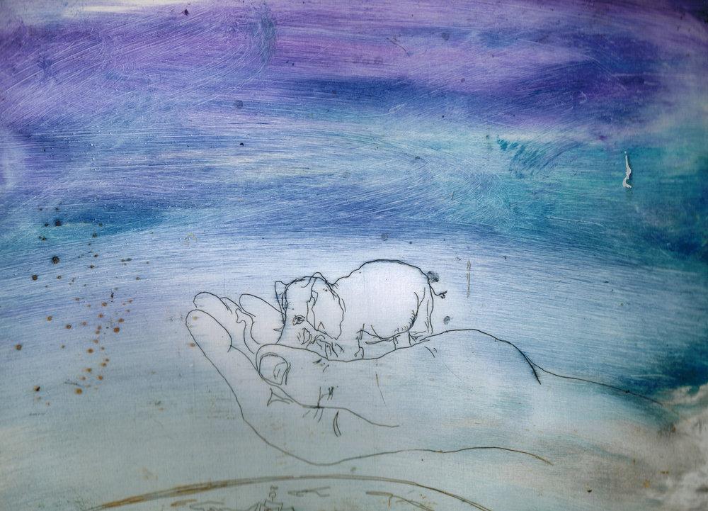 elephant inpalm.jpg