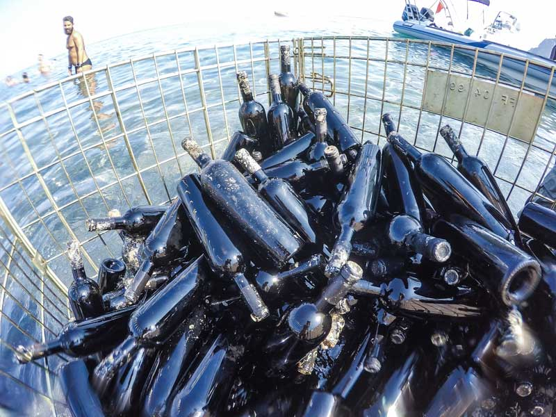 Gaia Winery Santorini- Thalassitis
