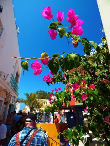 SantoriniOia.jpg