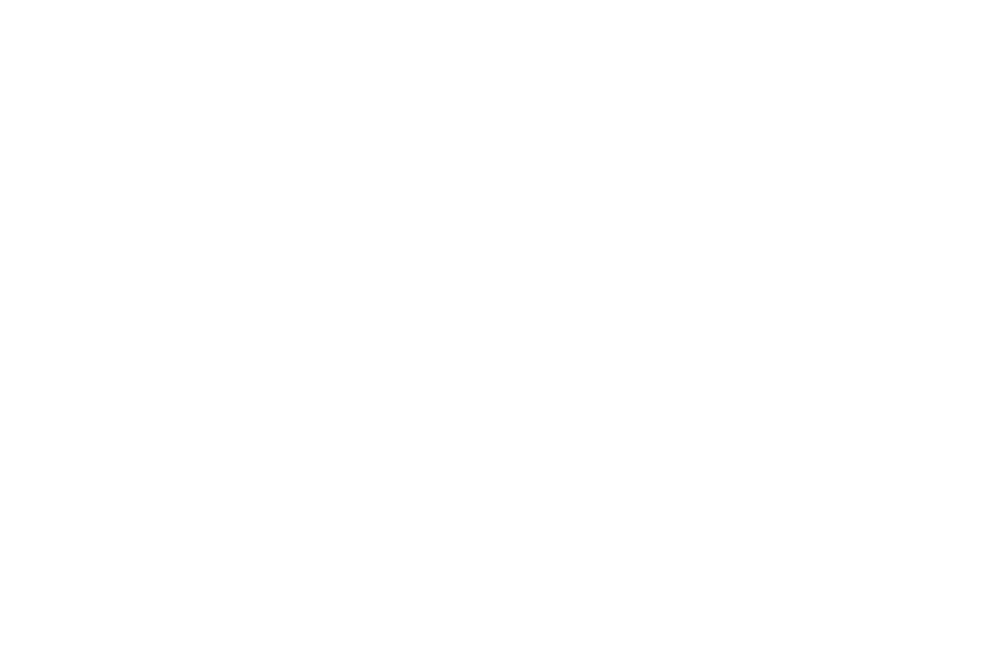 the-bridge-white.png