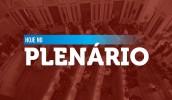 plenario.jpeg
