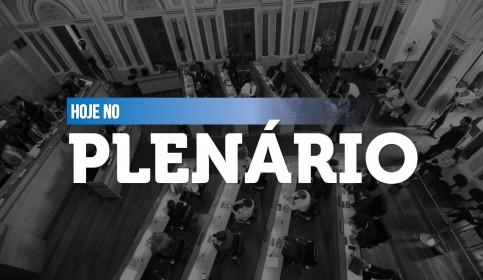 plenario.jpg