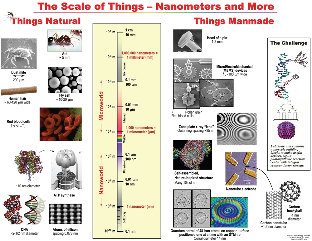 Scale of Things Chart. Image source: Basic Energy Sciences, U.S. Department of Energy, U.S. DOE Version 01-18-05, pmd by Office of Science, U.S. Department of Energy is licensed under Public Domain Mark 1.0