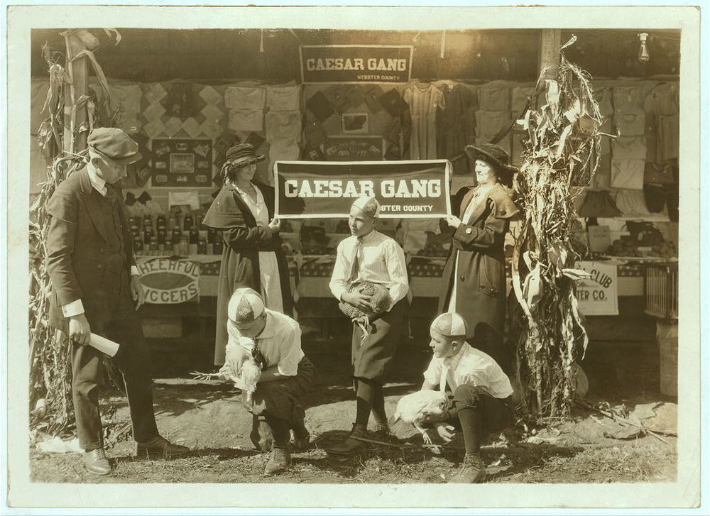 "Some of the ""Caesar Gang"" boys demonstrating how to cull chickens to improve quality and quantity of product. Under direction of J. A. Wolfram County Agent, Webster Co. W. Va. State 4 H Fair, Charleston, W. Va. Oct. 13, 1921.  Image source:  Library of Congress , Prints & Photographs Division,  National Child Labor Committee  Collection,  LC-DIG-nclc-04391  by Lewis W. Hine (1874-1940) has  no known restrictions on publication"