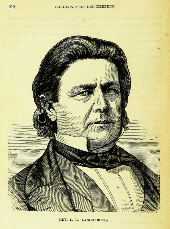 Rev. L. L. Langstroth. Image source:  The  new bee-keepers' text book, 24th edition , 1878, page 218 (assessed from  Biodiversity Heritage Library , original contributor  Cornell University Library ) by Albert J. King is licensed under  Public Domain Mark 1.0