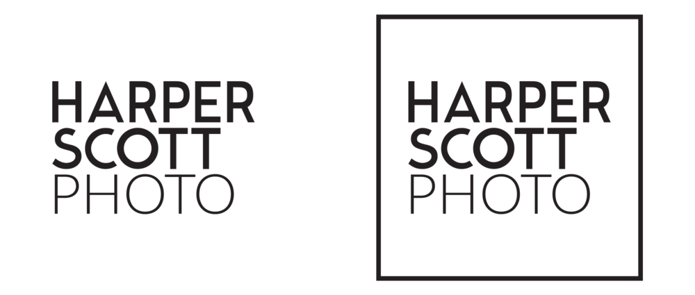 harper-scott-photo-branding-logo-walnut-wasp-design.png