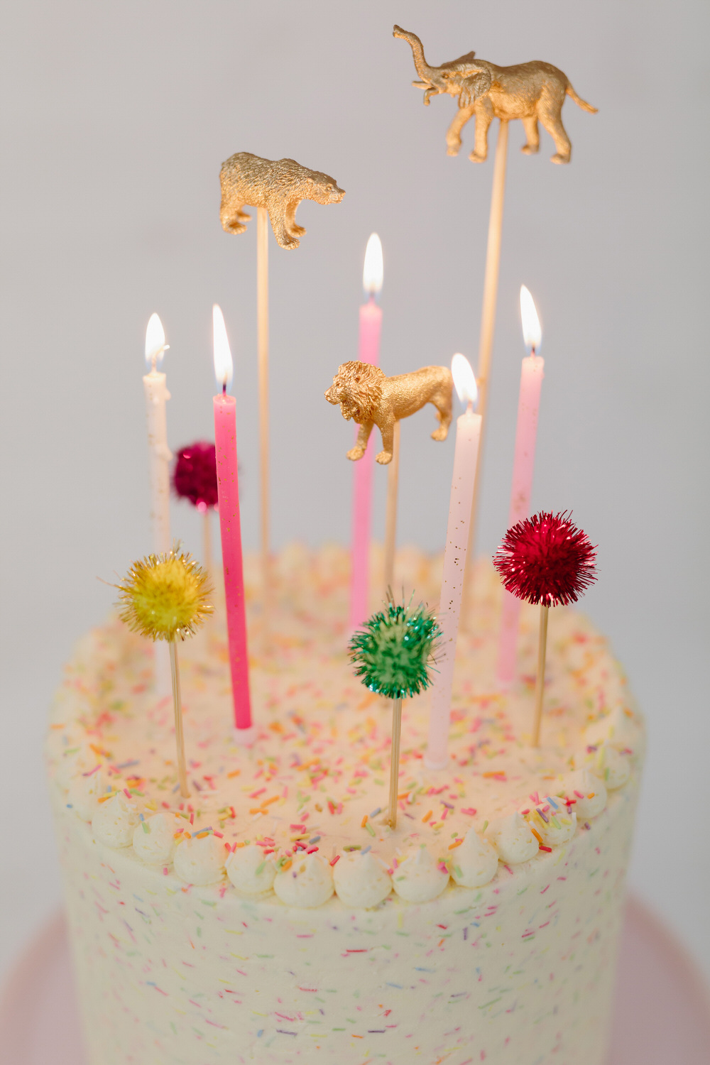 glasgow-food-photography-cake-big-bear-bakery-birthday-6