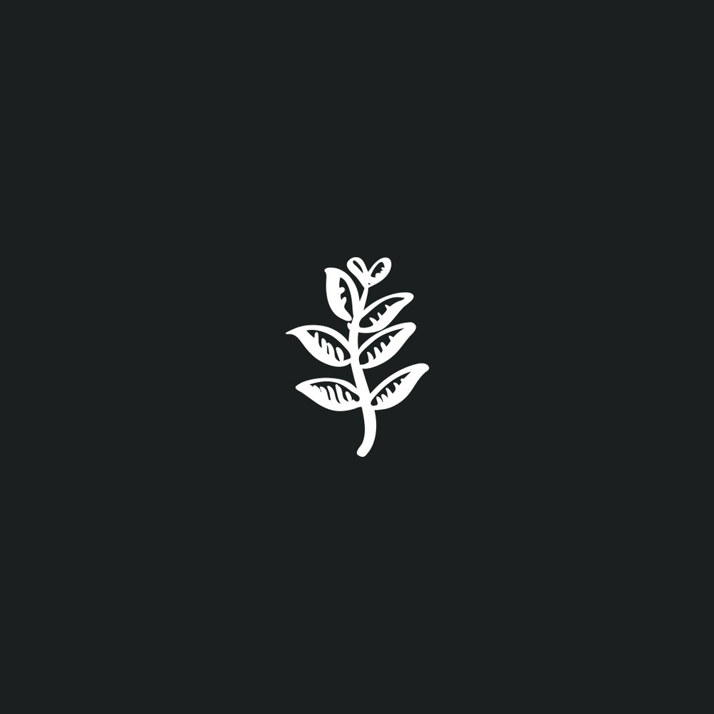 Mark-Timm-Leaf-Illustration.jpg