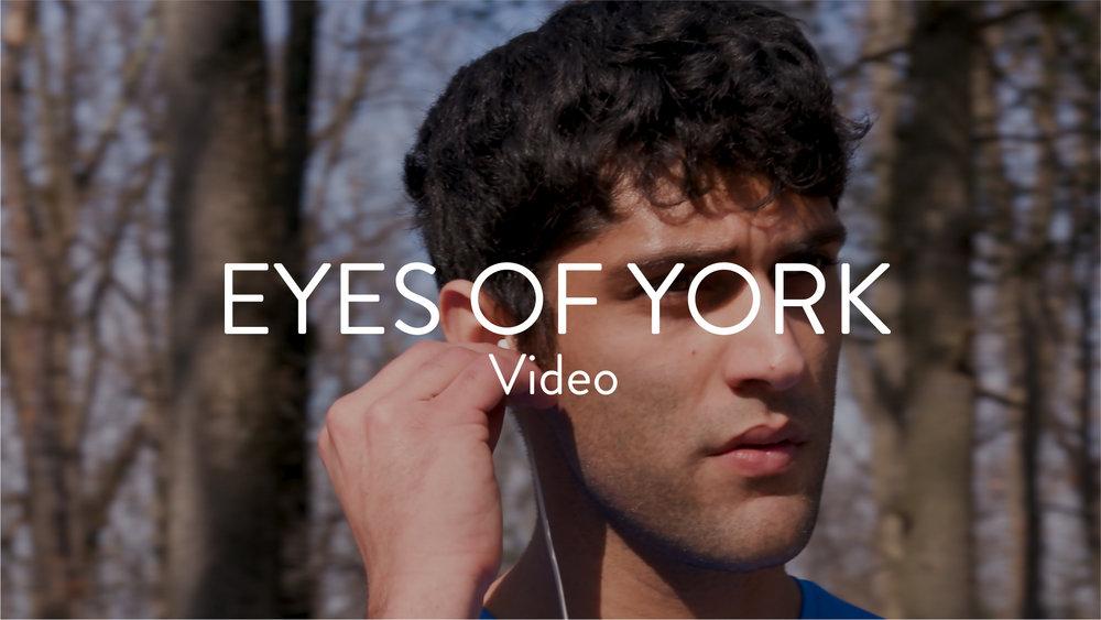 © ProArts Media Work Thumbnail - Eyes Of York-15.jpg