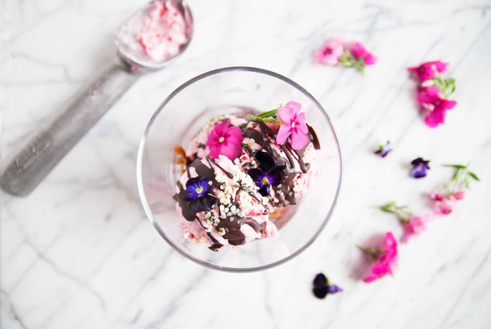 raspberry-coconut-vegan-ice-cream-fried-parsley