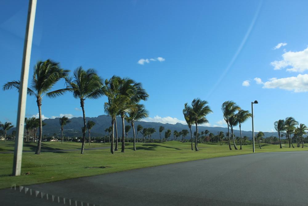 Golf Field2.jpg