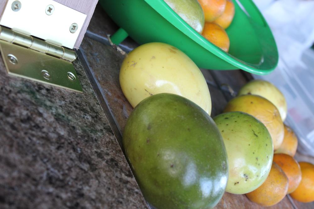 Fruits Market.jpg