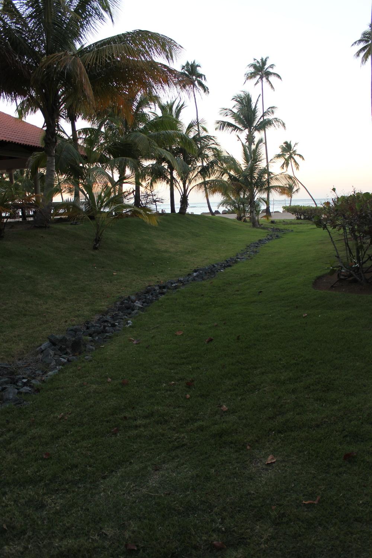 Pathway to th beach.jpg