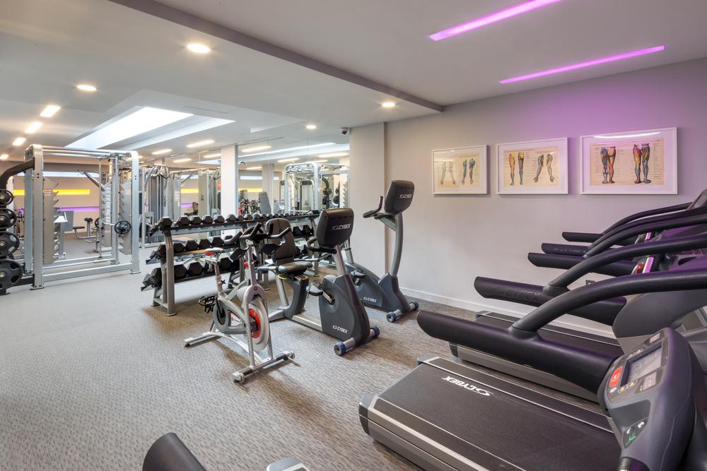 Icon fitness weslo flex rower ojcommerce