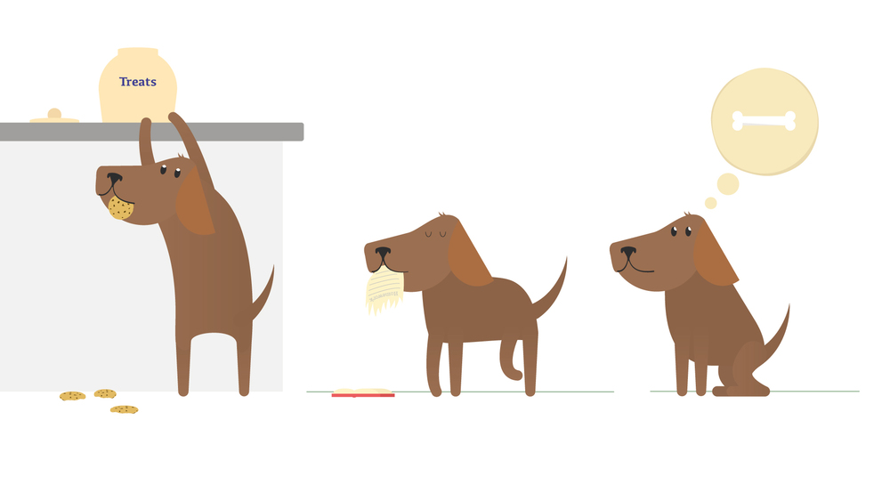 Dog-A-styles-01.jpg