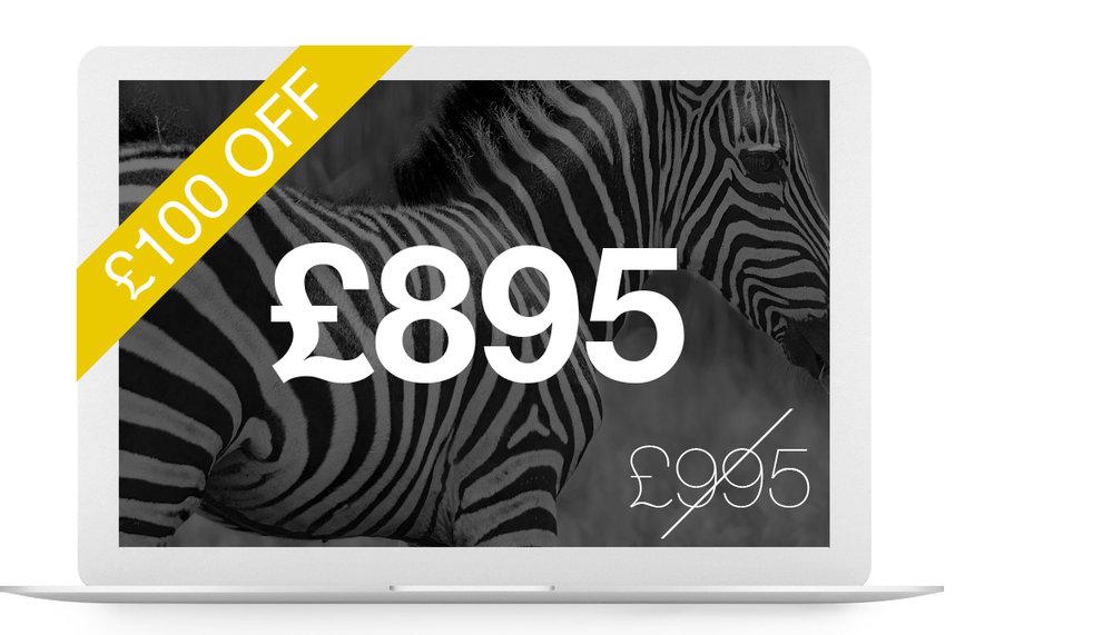 Plains website package £695