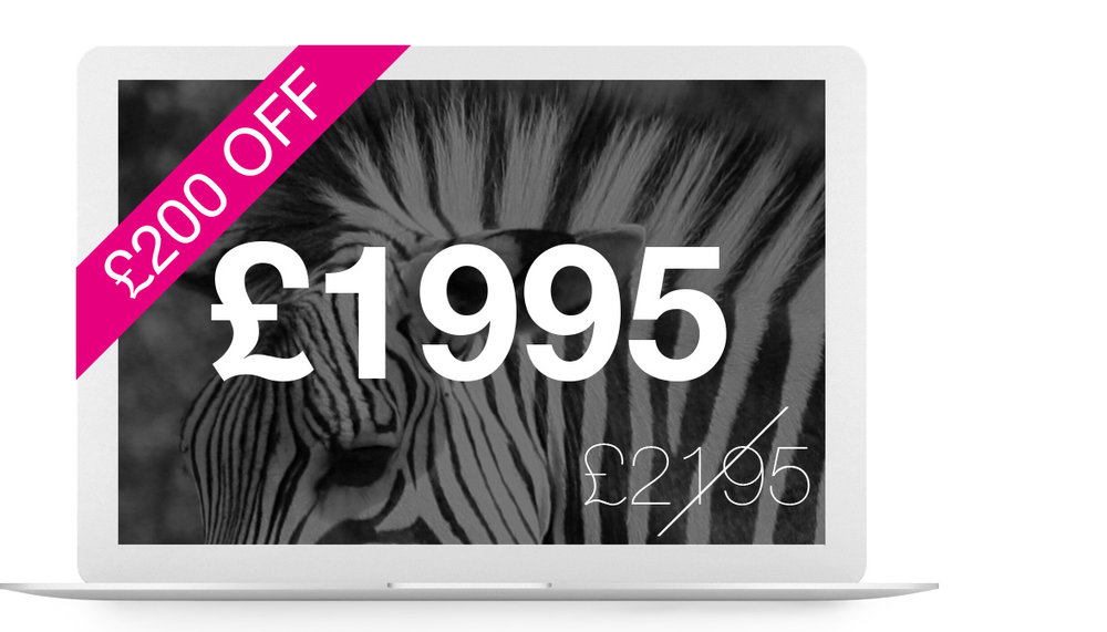 Imperial website package £1195