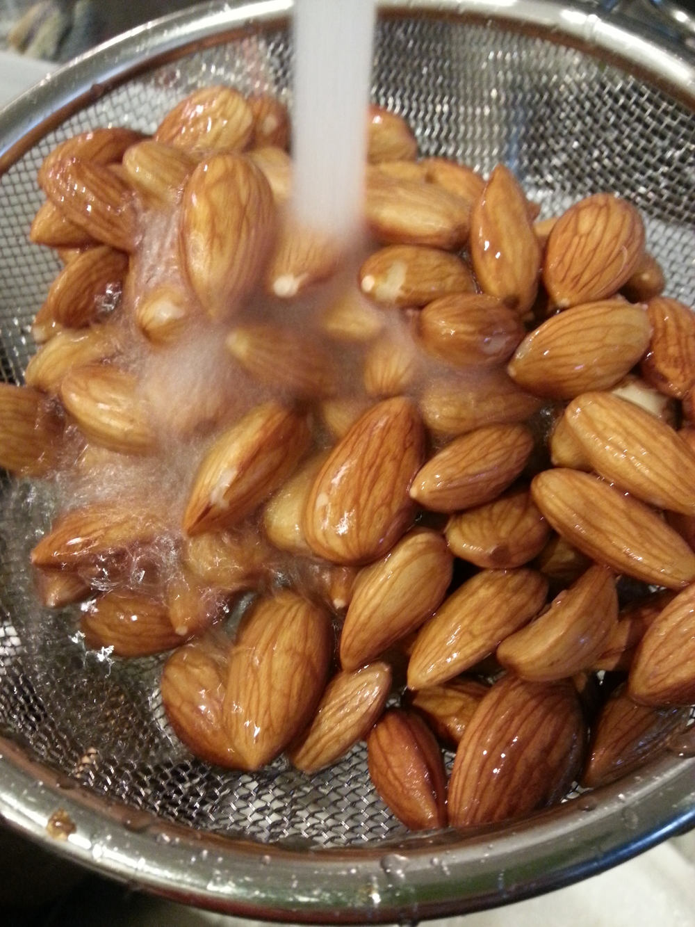 You start by soaking a cup of raw almonds in 3 cups of water for 6-8 hours, keeping the container in the refrigerator. When you are ready to make the nut milk, discard the soaking water and rinse the almonds well. The soaking process removes a natural occurring layer on the outside of the nuts that, if eating without removing, hinders your body from absorbing all the goodness those nuts have to offer. It's not the end of the world if you don't soak your nuts but why not get all the benefits instead of just some?