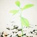 financial wellness for advisors.jpg