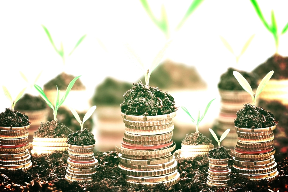 Golden-coins-in-soil-with-young-plant-isolated.-Money-growth-web.jpg
