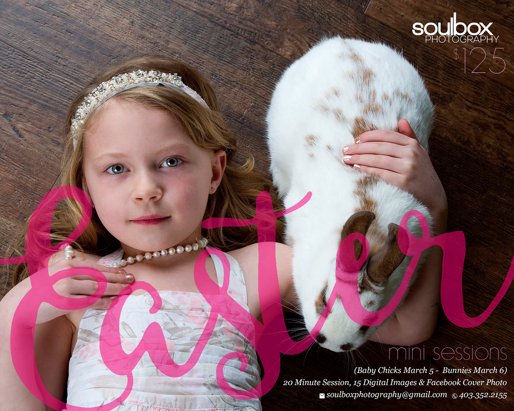 Soulbox Photography Easter Mini Sessions Live Chicks Live Bunnies