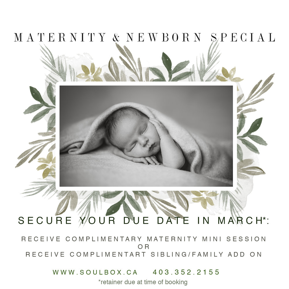 Maternity Photography Red Deer Newborn Photography Red Deer