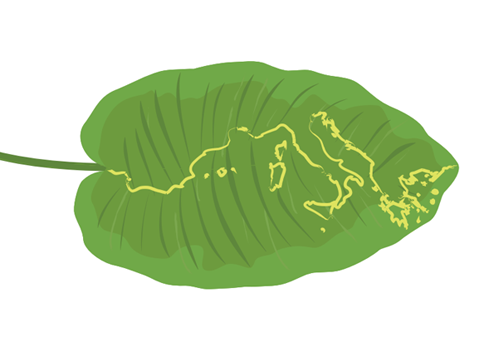 First Southern Europe Green Office Summit - 30 MAY - 2 JUNE 2018 CITY OF TURIN