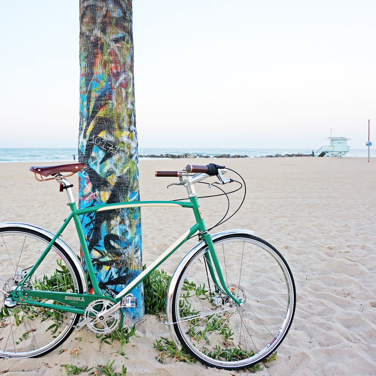 Bixby Bike at Palm Tree on Beach - iPhone Edit.jpeg